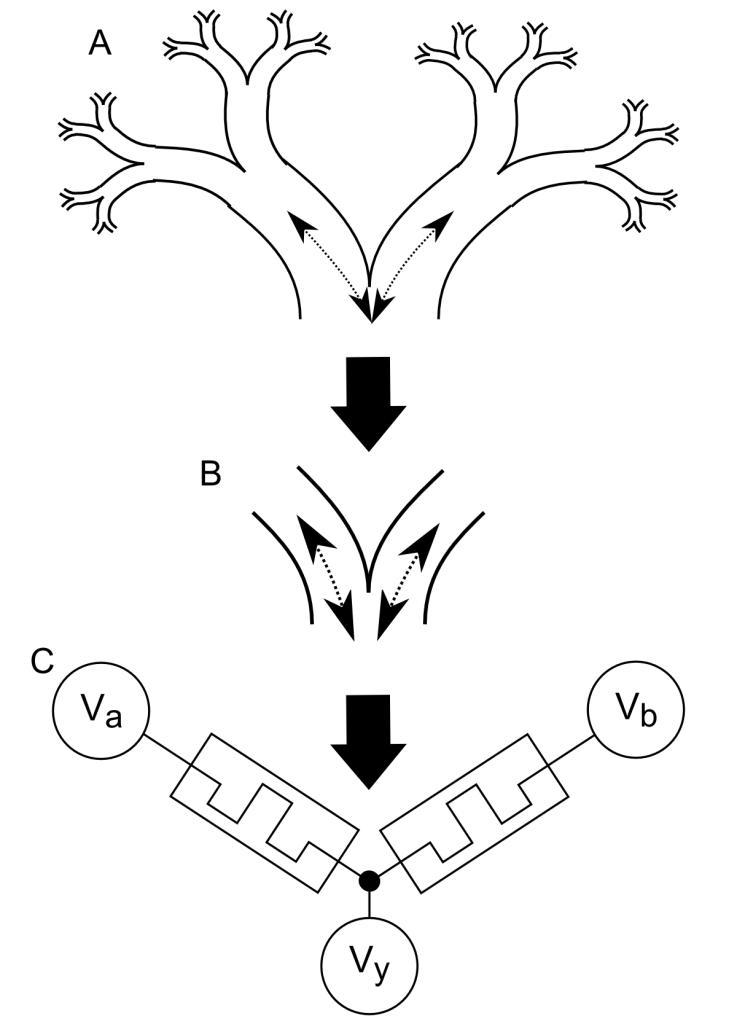 Memristive Synapse