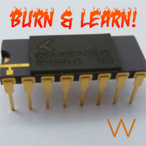 Burn And Learn BS-AF-W Memristors