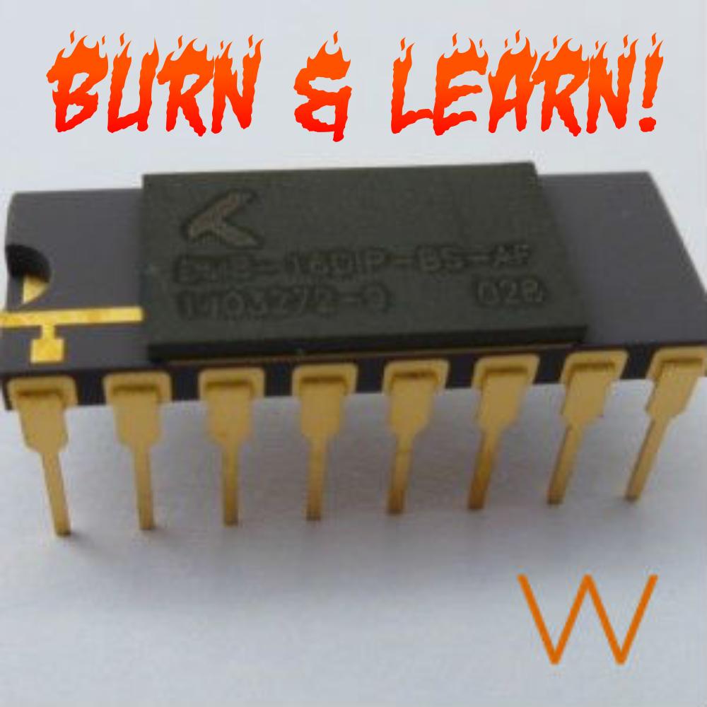 Burn And Learn BS-AF-W Memristors