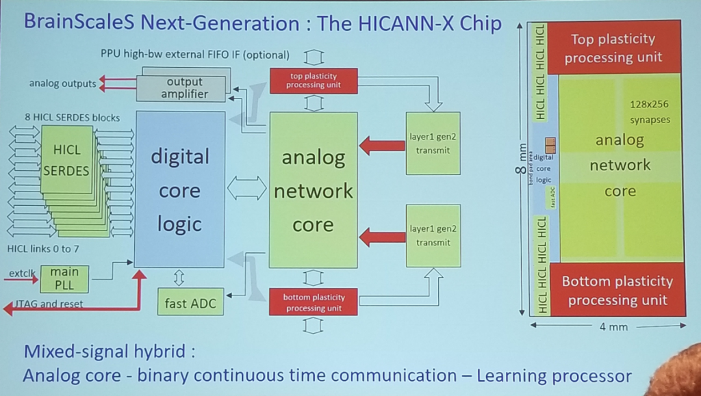 BrainScaleS Next-Generation : The HICANN-X Chip